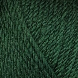 Sirdar Country Classic Worsted 100g Pine 671