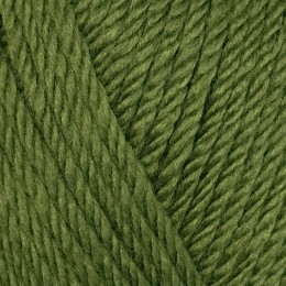 Sirdar Country Classic Worsted 100g Fern 672