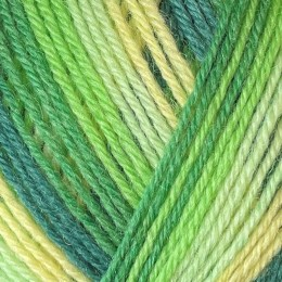 West Yorkshire Spinners Signature Seasons 4Ply 100g Spring Green 882
