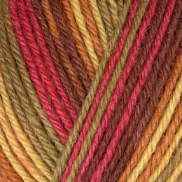 West Yorkshire Spinners Signature Seasons 4Ply 100g Autumn Leaves 885