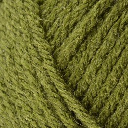 Bergere de France Magic Aran 50g Lichen 24542