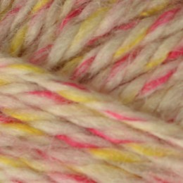 Bergere de France Twiste Aran 50g Rose/Jaune 20062