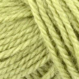 Erika Knight British Blue Wool DK 25g Leaf 110