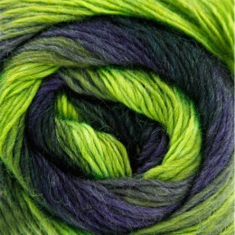 King Cole Riot DK 100g Reflections 238