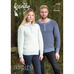 TRW5823 Adult Jumpers Wendy Aspire Chunky