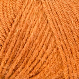 West Yorkshire Spinners Aire Valley DK 100g Nutmeg 630