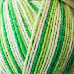 West Yorkshire Spinners Aire Valley Aran Cocktails 100g Mojito 879