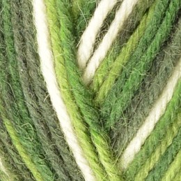West Yorkshire Spinners Aire Valley Aran 100g Green Polka 814