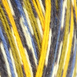 West Yorkshire Spinners Signature Birds 4Ply 100g Blue Tit 818