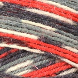 West Yorkshire Spinners Signature Birds 4Ply 100g Bullfinch 861