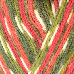 West Yorkshire Spinners Signature Birds 4Ply 100g Holly Berry 886