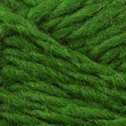 Jamieson and Smith Shetland Aran Worsted 50g Green 11
