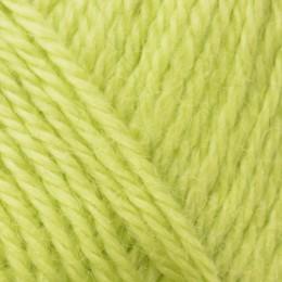 Wensleydale Longwool Aran 100g Lime Sherbet 41