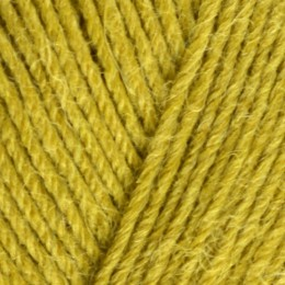 West Yorkshire Spinners Signature Spice 4Ply 100g Cardaman 351