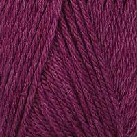 Purple 113