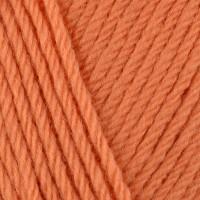 Apricot 495