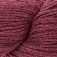 Raspberry 631