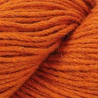 Pumpkin 651