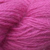 Rhubarb 17