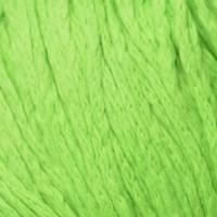 Algae 3