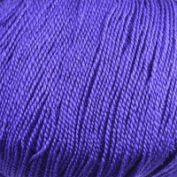 Purple Petunia 27