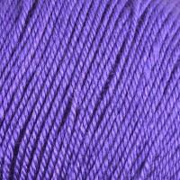 Purple Petunia 10