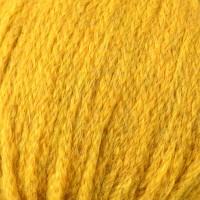 Golden Dusk 105