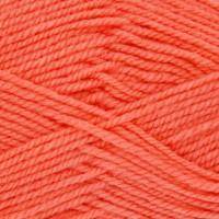Shrimp 1824