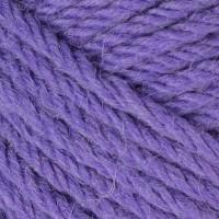 Violet 6242