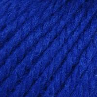 Blue Velvet 26