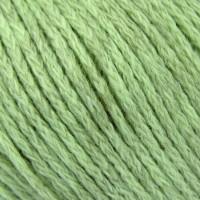 Seagrass 249