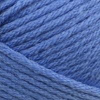 Bluebird 208
