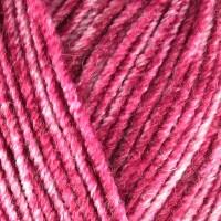 Raspberry 1905
