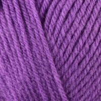 Violet 488